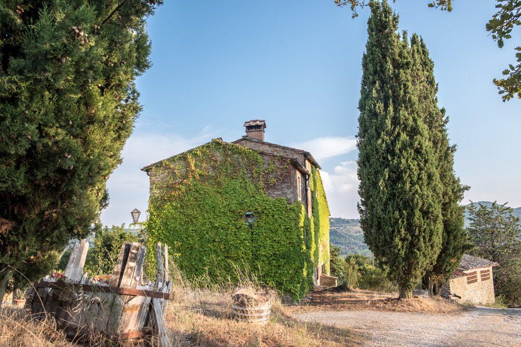 pruneto-vignaioli-di-radda-panorama