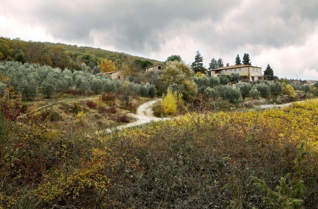 vignaiolidiradda-val-delle-corti-panorama